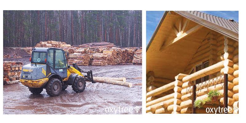 oxytree-wykorzystanie-drewna-w-przemysle