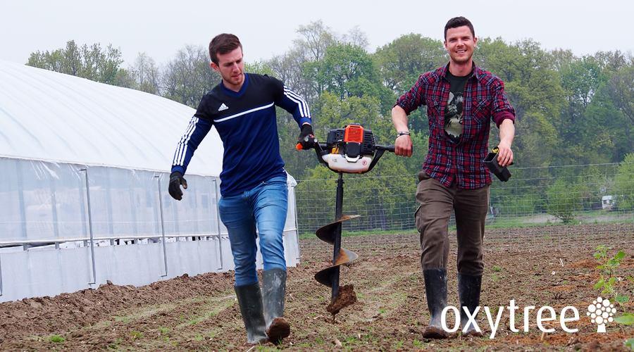 oxytree-zakladanie-plantacji-wiercenie-otworow
