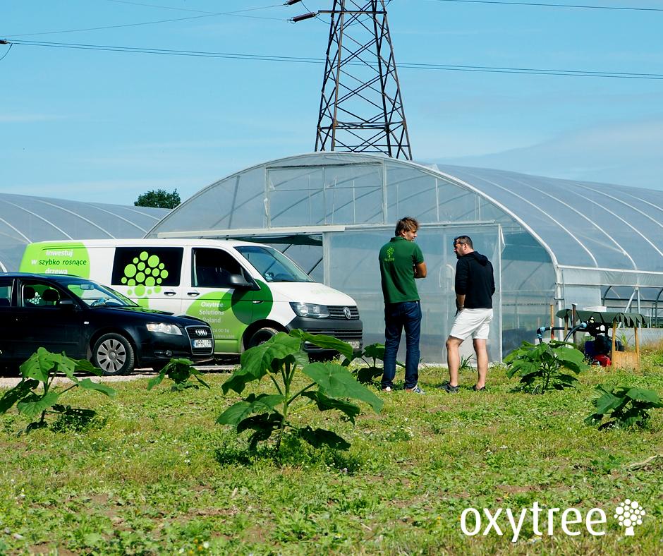 oxytree-dni-otwarte-plantacja-firmowa-stoszyce