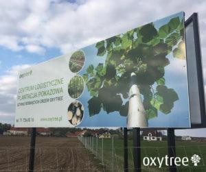 oxytree-plantacja-pokazowa-stoszyce