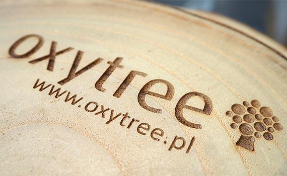oxytree-drzewo-szybko-rosnace-drewno
