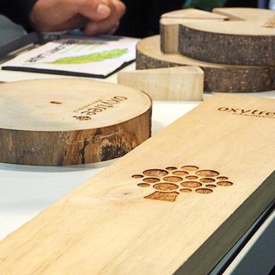 oxytree-drewno-probki-drzewo