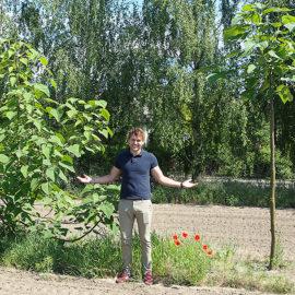 oxytree-drzewo-tlenowe-bez-usuwania-pedow